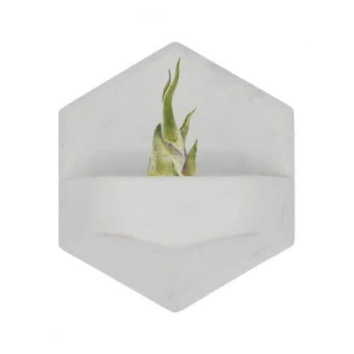 MonoPlanter Concrete White